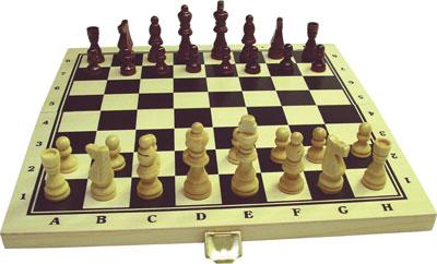 Schach Online Ohne Anmeldung